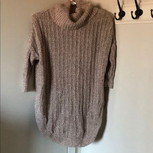 Express turtle sweater